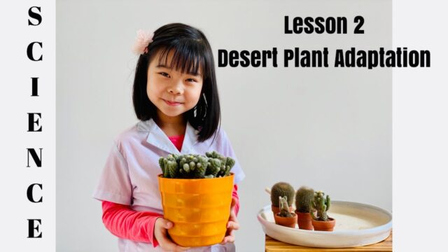 SCIENCE – Lesson 2: Desert Plant Adaptation [Nguyen Le An Nhien]