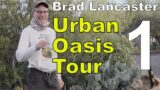 Brad Lancaster's Urban Permaculture Oasis Homestead Tour – Tucson Arizona.(Part 1)