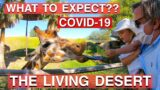 The Living Desert Zoo  / COVID-19 / What to Expect??