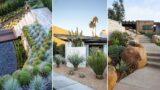 10 Drought-Tolerant Landscaping Ideas for a Modern Low-Water Garden | garden ideas