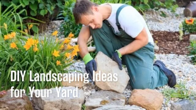 DIY Landscaping Ideas for Your Yard