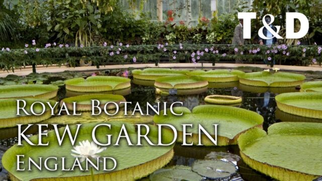 Royal Botanic Gardens, Kew – England Attractions – Travel & Discover