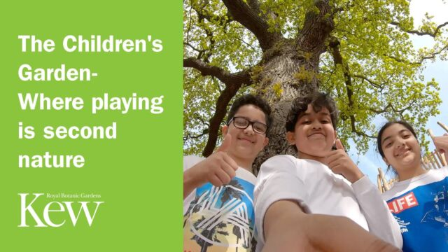 The Children's Garden: Where playing is second nature