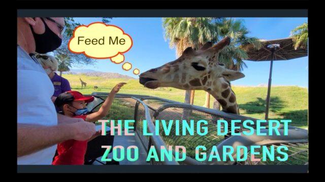 THE LIVING DESERT ZOO And GARDENS | PALM DESERT | PALM SPRING | Eves California