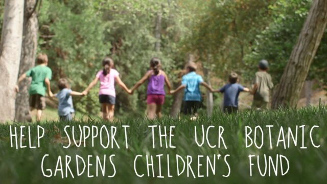 UC Riverside Botanic Gardens Children's Fund