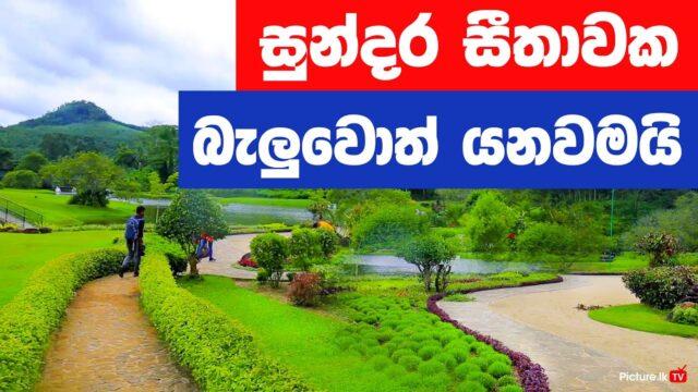 Seethawaka Wet Zone Botanic Gardens (Avissawella) –  Best things to do in Colombo – Travel Guide