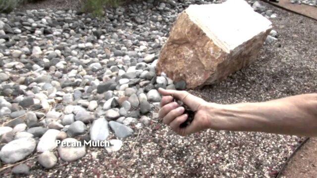 Mulching Practices, Water-Wise Garden in Rio Rancho NM