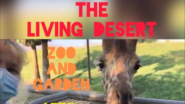 The Living Desert zoo and gardens palm desert ca