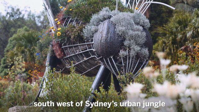 The heartbeat of the Australian Botanic Garden Mount Annan
