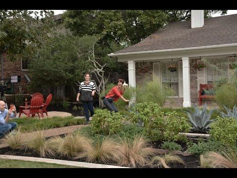 Front yard makeover |Ryan & Havilah Gee |Central Texas Gardener