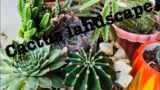 how to landscape cactus sa #quarantine wd rebecca#tutorial #marengmitch #cactus #mitchmontecarlo