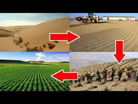Food Security- Agriculture in Desert – Dake Rechsand brings Miracle Sand for Plants in Middle East