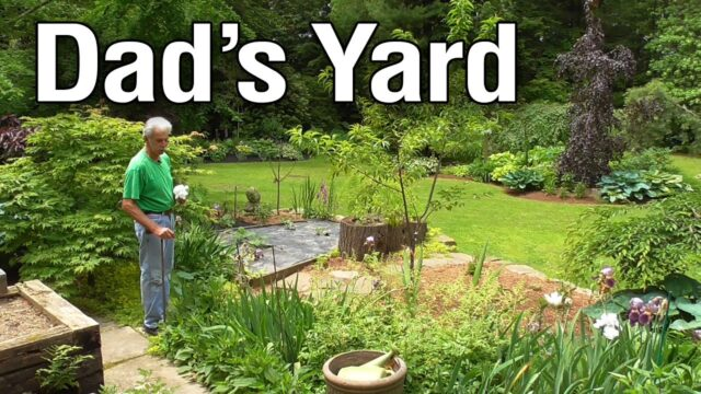 MY Dad: A Professional Landscaper's Yard / Garden Tour + Personal Interview!