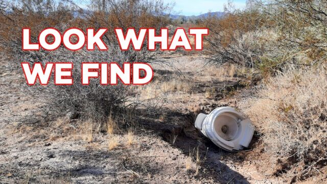 We Find Crazy Things Walking In The Desert!