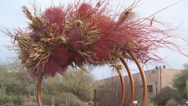 Amazing new art installations at Desert Botanical Garden in Phoenix