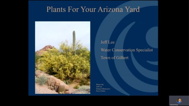 Landscape Workshops: Plants for Your Arizona Yard