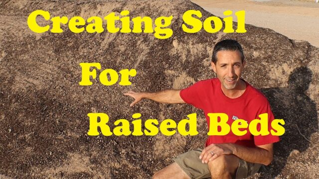 Raised Garden Beds in Arizona | Creating Soil in Raised Beds