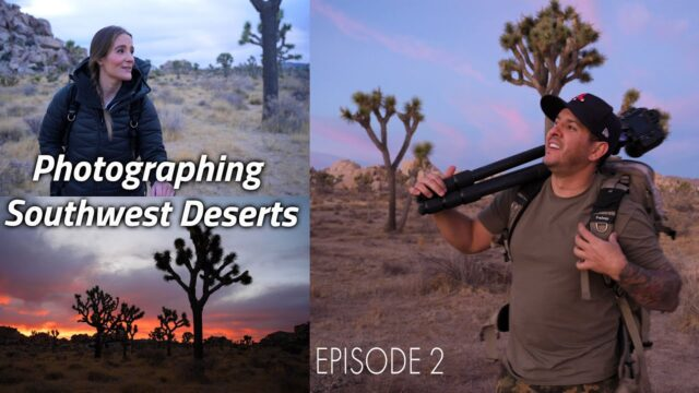 The MOJAVE Desert / Landscape Photography