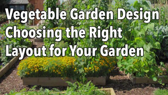 Vegetable Garden Design – Choosing the Right Layout for Your Garden