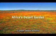 BBC-Natural World-Desert Gardens in Africa.avi