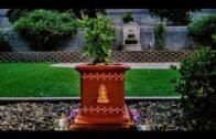 Desert Garden: Thulasi katte: How to make it yourself |