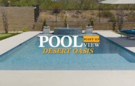 Pool View-Desert Oasis   California Pool and Landscape
