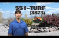 Tucson Turf Complete Landscaping