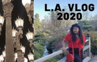 Things to do in Los Angeles | VLOG 2020 |