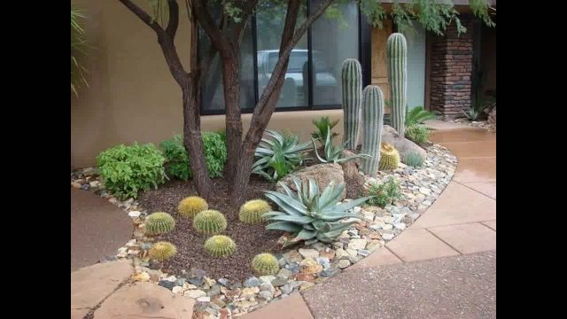 Desert Landscaping With River Rock : Garden ideas river rock landscaping desert care