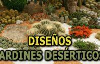 Diseñosde jardines desérticos (Plantas desérticas)|| Information Park