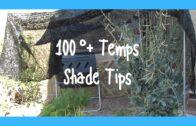 100-degree temporary shading technique in the desert garden in week