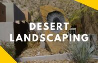 Amazing desert beautification ideas