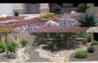 Desert landscaping design ideas