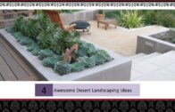 Great desert landscaping idea