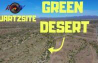 Green Quartz Stone Arizona Desert??