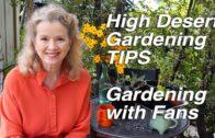 High Desert Gardening Tips   Wood Chips   Urban Gardening