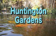 Huntington Gardens in Los Angeles