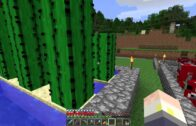 Minecraft Cactus Guide (Cactus, Planting, Damage Caused by Cactus, Guide