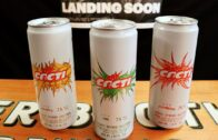 Preview of Travis Scott's Cacti Spiked Seltzer!