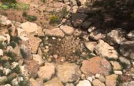 Rainwater Management-Santa Fe Botanical Garden