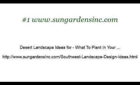 Southwest Desert Landscaping