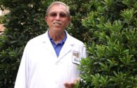 Star Nursery Dr. Q waters the trees and shrubs