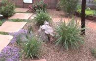 Albuquerque Garden Tour with Landscape Designer Michael Polikoff