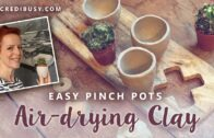 Easy air-drying clay-small tongs for cacti and succulents