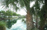 Ellenton Gardens-a carefree RV resort