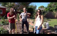 Gardening with Brian Danielson (WWE superstar Daniel Bryan) and Brie