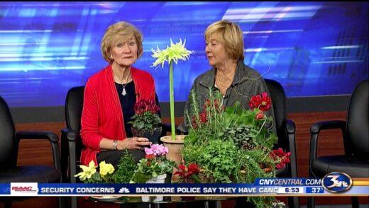 Gardening with Carol 12 12 15