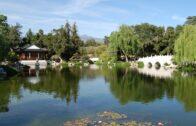 Huntington Library, Rose Garden, Chinese Garden, Japanese Garden, Desert Garden,