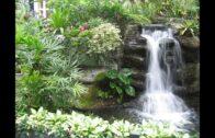 Natural Landscape Design Concept-Landscape Design Concept in Budget