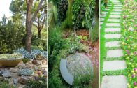 Renew your garden for spring…what is modern now? | DIY